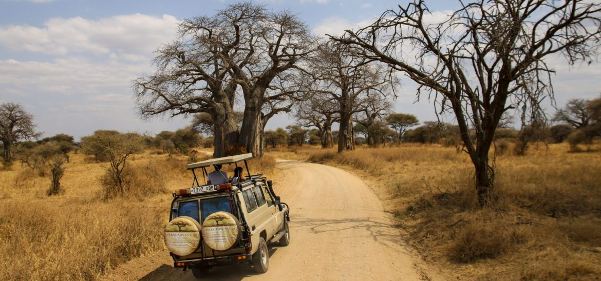 5 Useful Tips for Travel in a Desert Safari