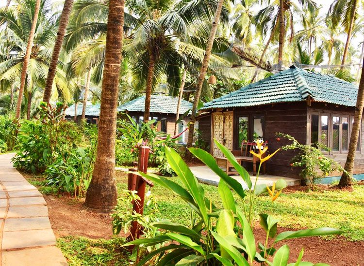 Best Five Cottage in Goa
