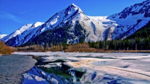 Tour In Alaska-Feel snow covered Nature